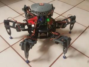 Raspberry pi2 robot Projesi