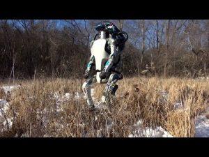 Boston insansı robotları